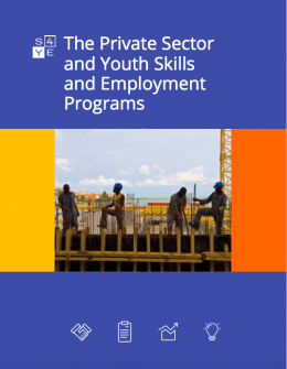The Private Sector and Youth Skills and Employment Programs
