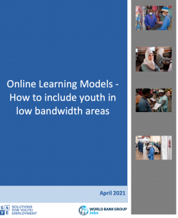 s4ye online learning models brief